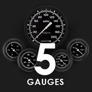 Picture for category Five Gauge Sets
